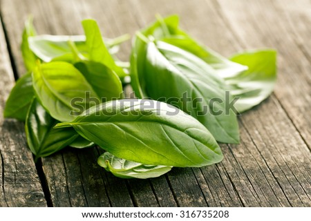 basil leaves on old wooden background - stock photo