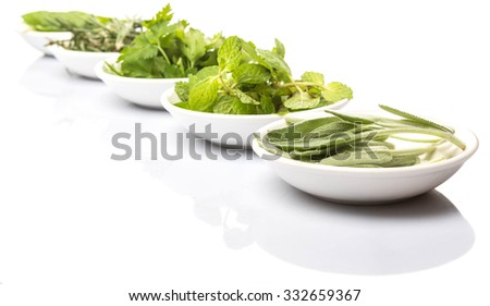 Basil leaves, rosemary. mint, parsley and sage leaves herbs in white bowl over white background