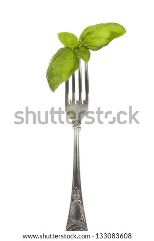 Basil leaves with water drops on silver fork isolated