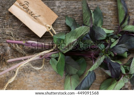 Basil on a dark wood background 