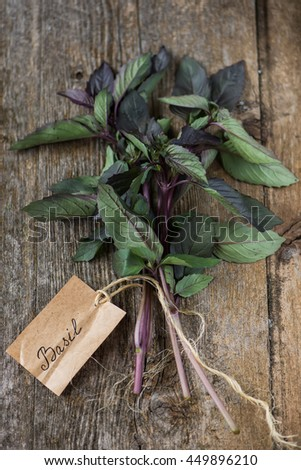 """Basil on a dark wood background with a sticker that says """"basil"""" - stock photo"""