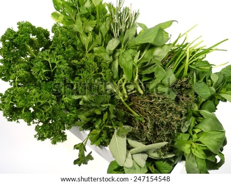 Basil thyme parsley flat leaf parsley Sage celery chives rosemary and  mint in a casket over white - stock photo