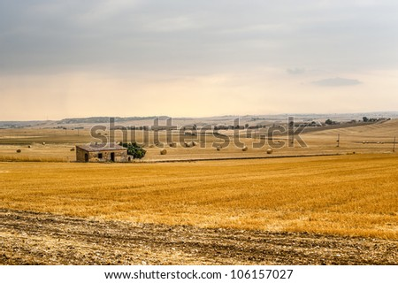 Basilicata (Matera) - Farm at summer