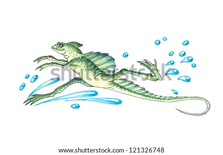 Basiliscus (genus) or basilisks, Jesus Christ lizards, Mystical lizards, Devil's lizard. Basilisks have the unique ability to walk on water. - stock photo
