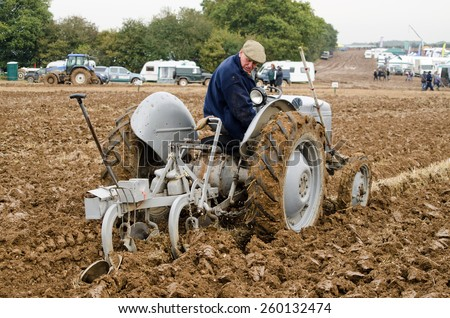 BASINGSTOKE, UK - OCTOBER 12, 2014: A competitor on a vintage tractor,  British National Ploughing Championships.  Competing in the Ferguson ploughing championship on a vintage Ferguson tractor. - stock photo