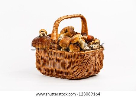 Basket full of mushrooms on a white background - stock photo