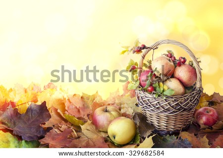 basket of apples and rosehips on autumn leaves. bokeh background with space for your text