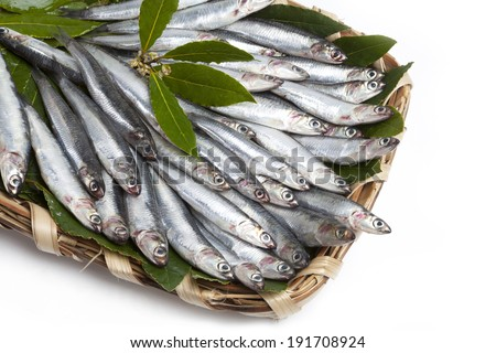 basket of fish (anchovies) - stock photo