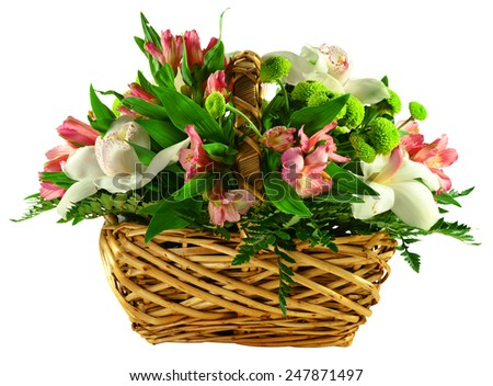 Basket of flowers and greens isolated on white