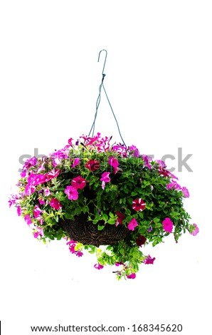 basket of flowers isolated on white background - stock photo