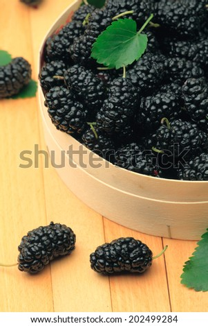 Basket of fresh mulberries
