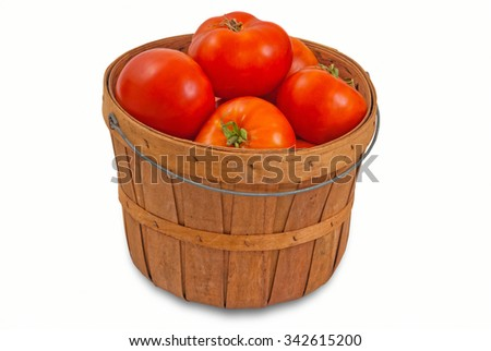 Basket of Fresh Picked Tomatoes for Canning, Isolated on White with Clipping Path - stock photo