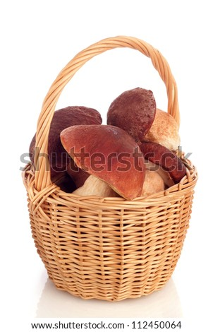 basket of mushrooms  on white background - stock photo