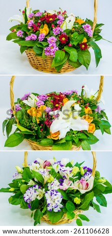 basket of orchids, pink carnations, chrysanthemums. a set of three images - stock photo