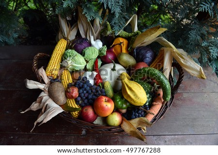 Basket of organic food vegetables, autumn goods after harvest