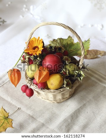 basket of organically reared autumn goodies - stock photo