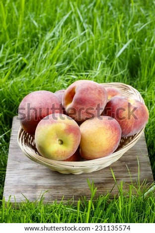 Basket of peaches - stock photo