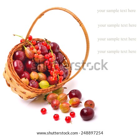 Basket wirh ripe cherry, currants and gooseberries isolated on white background - stock photo