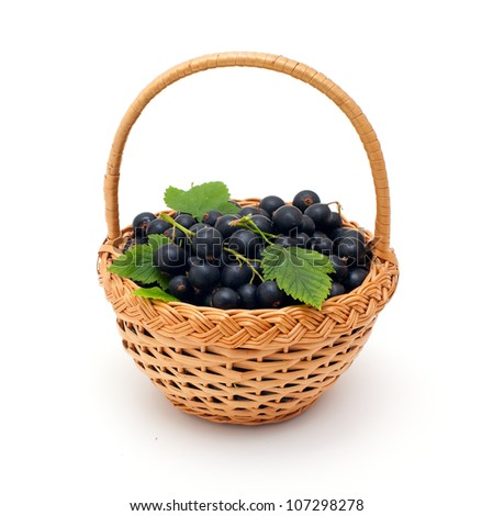 basket with black currant berries over white - stock photo
