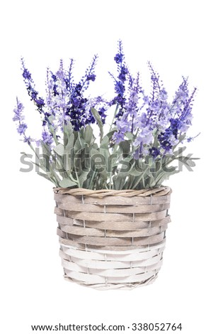 Basket with  flowers on a white background. - stock photo