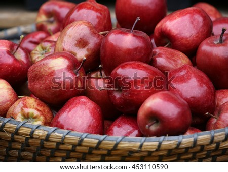 basket with fresh red apples. - stock photo