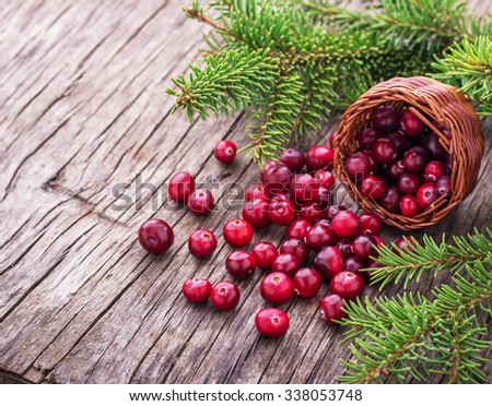Basket with ripe fresh forest cranberries on the texture wooden background. selective Focus - stock photo