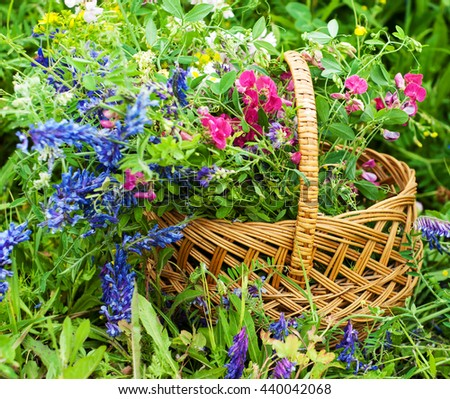 basket with summer wildflowers in the meadow