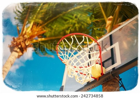 Basketball board ring on summer day on blue sky and green tree palm background in retro style - stock photo