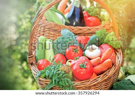 Baskets full of with organic vegetables