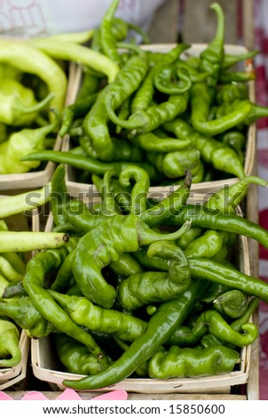 Baskets of green Anaheim chile peppers.