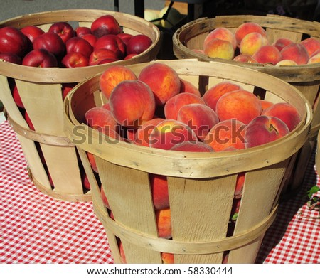 baskets of peaches and nectarines