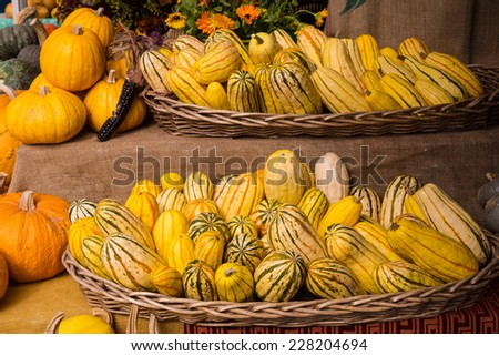 Baskets of Squash and Pumpkins - stock photo