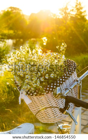 Baskets with daisies at sunset  - stock photo