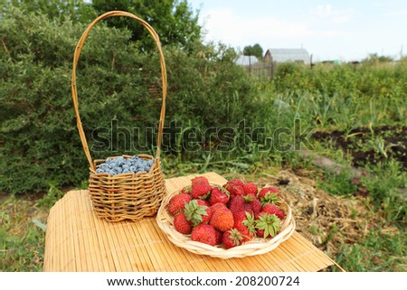 Baskets with strawberry and a honeysuckle standing on a table on a lawn