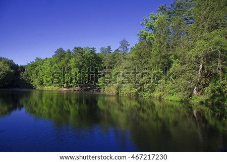 Bass Pond in Asheville, North Carolina with Summertime Green Tree Reflections