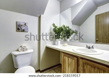Bathroom corner with vaulted ceiling and wooden cabinet decorated with plant and mirror