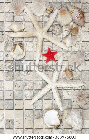 Bathroom decor: set of various seashells and starfishes on natural stone tile. Top view point.