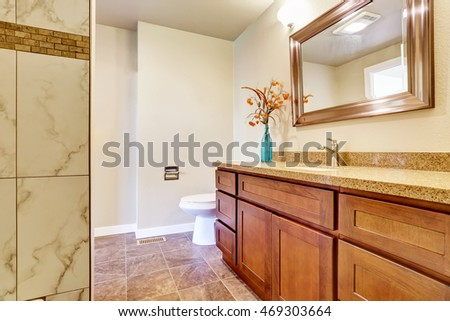 Bathroom interior with vanity cabinet and granite counter top. Northwest, USA
