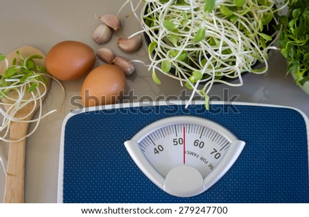 Bathroom Weight Scale and egg with  green young sunflower sprouts  diet food concept - stock photo