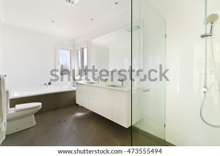 Bathroom with washing area and the toilet of the luxurious house.