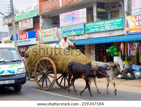 BATTICOALA, SRI LANKA - FEB 15, 2012: Modern car and traditional bullock cart on the road in Batticaloa. This is normal situation for Sri Lankan traffic. - stock photo