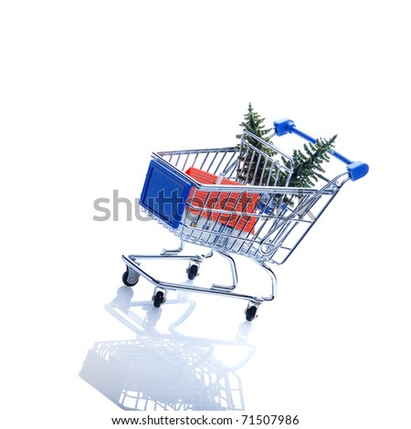 Baum a house in shopping cart on a white background - stock photo