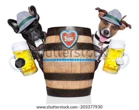 bavarian  dog couple behind a beer barrel toasting with beer mugs - stock photo