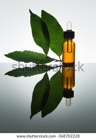 Bay essential oil, bay oil, bay essence, bay leaves, amber glass bottle, dropper