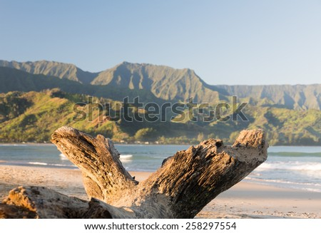 Bay from Hanalei beach with an old log or driftwood framing view at Hanalei, Kauai, Hawaii - stock photo