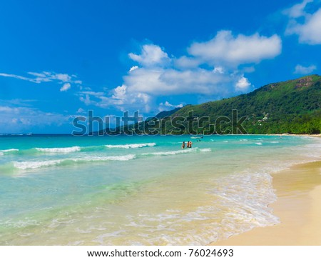 Bay Jungle Panorama - stock photo