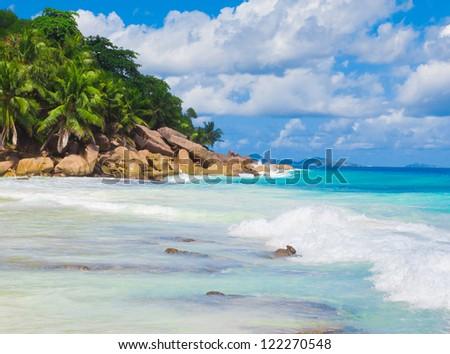 Bay Jungle Summertime - stock photo