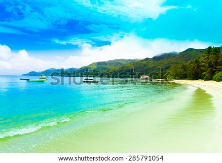 Bay Landscape Palms  - stock photo