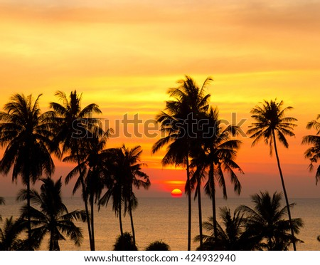 Bay View Coconut Horizon  - stock photo