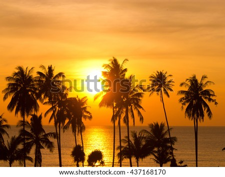 Bay View Palm Paradise  - stock photo